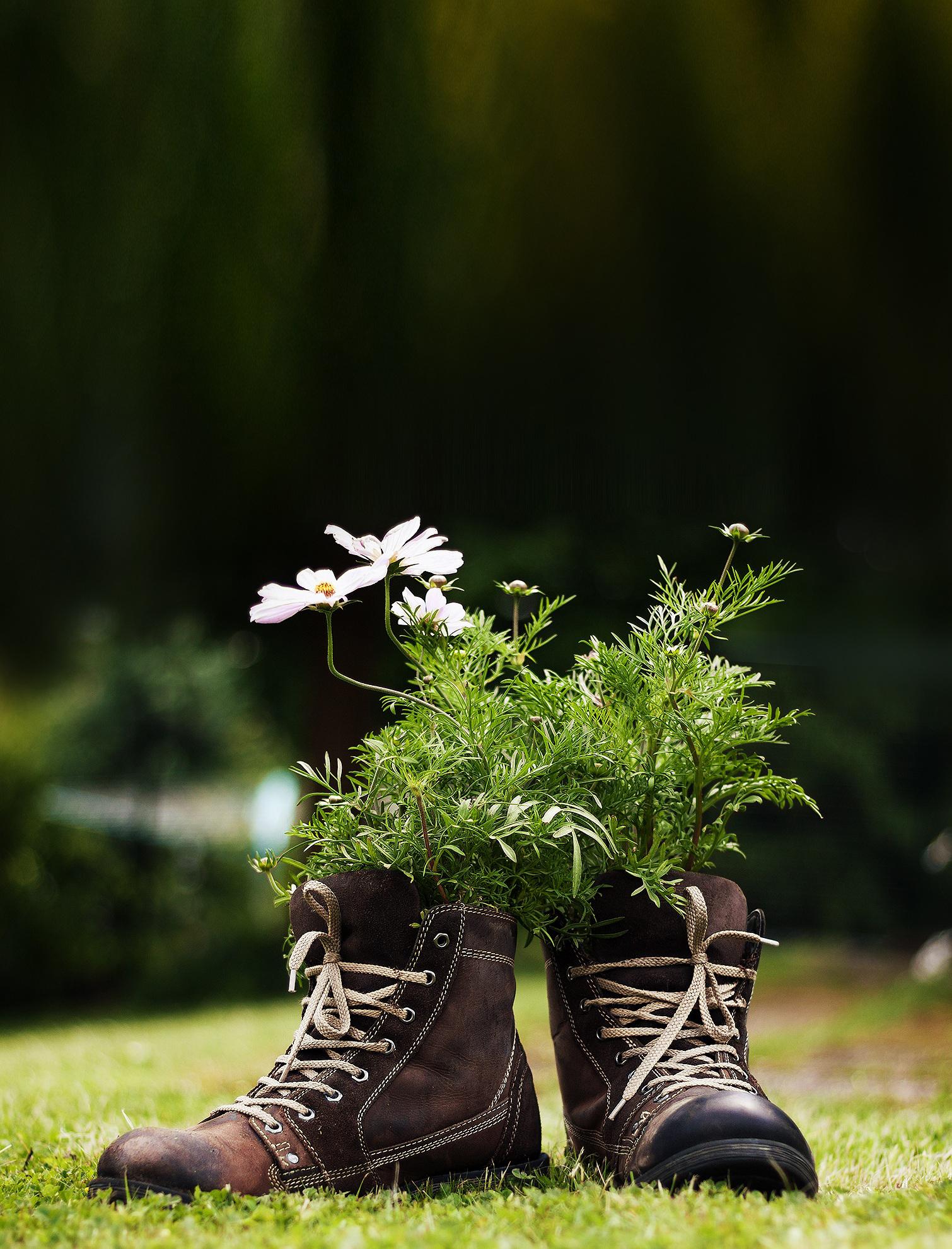 Alte Stiefel lassen sich wunderbar als Blumentöpfe zweckentfremden - ein Hingucker in jedem Garten!