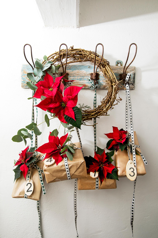 Adventskalender-Ideen mit Weihnachtssternen - Aufgehängt
