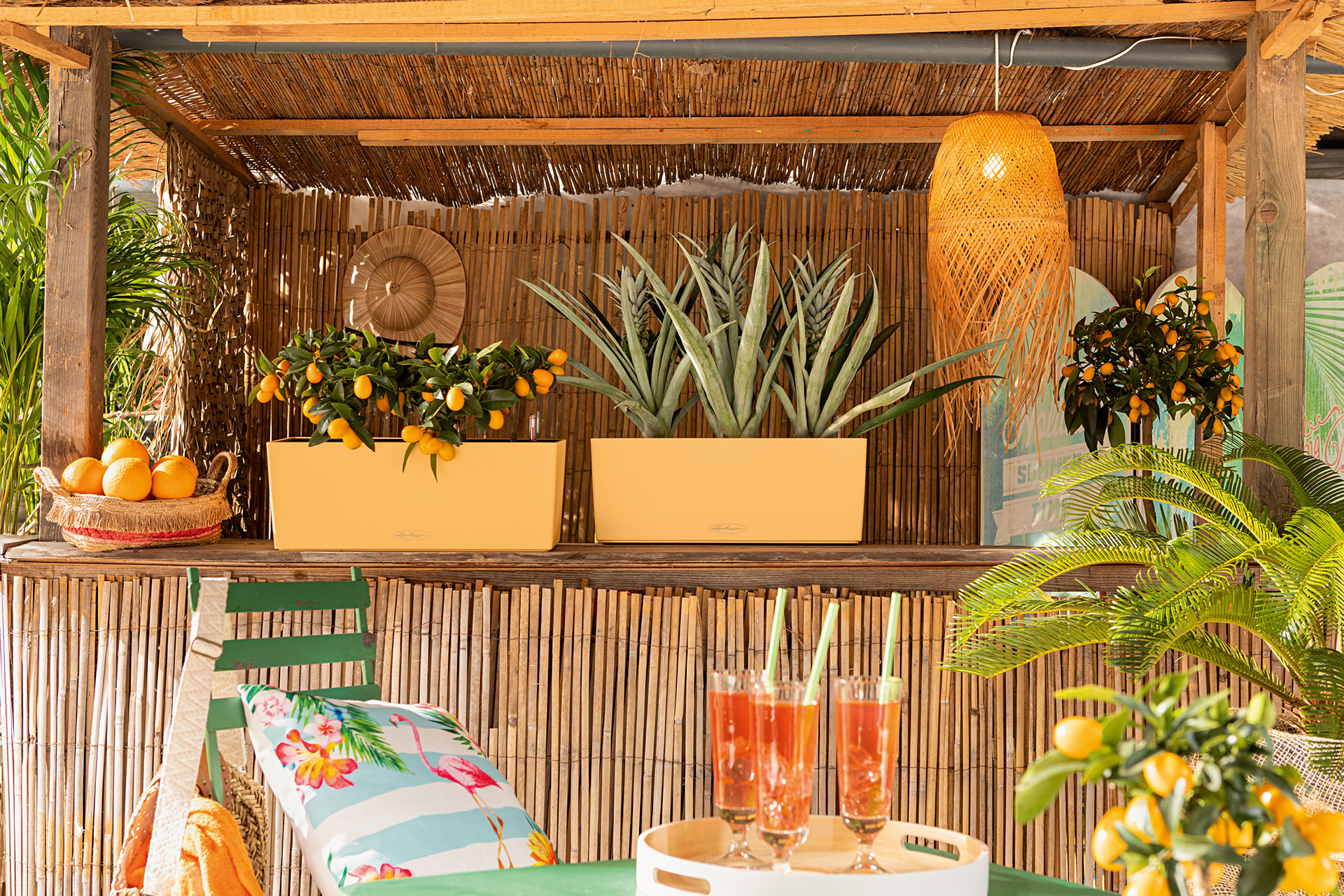 Wie ein Cocktail an der Tiki-Bar: BALCONERA in der Sonderfarbe Peach