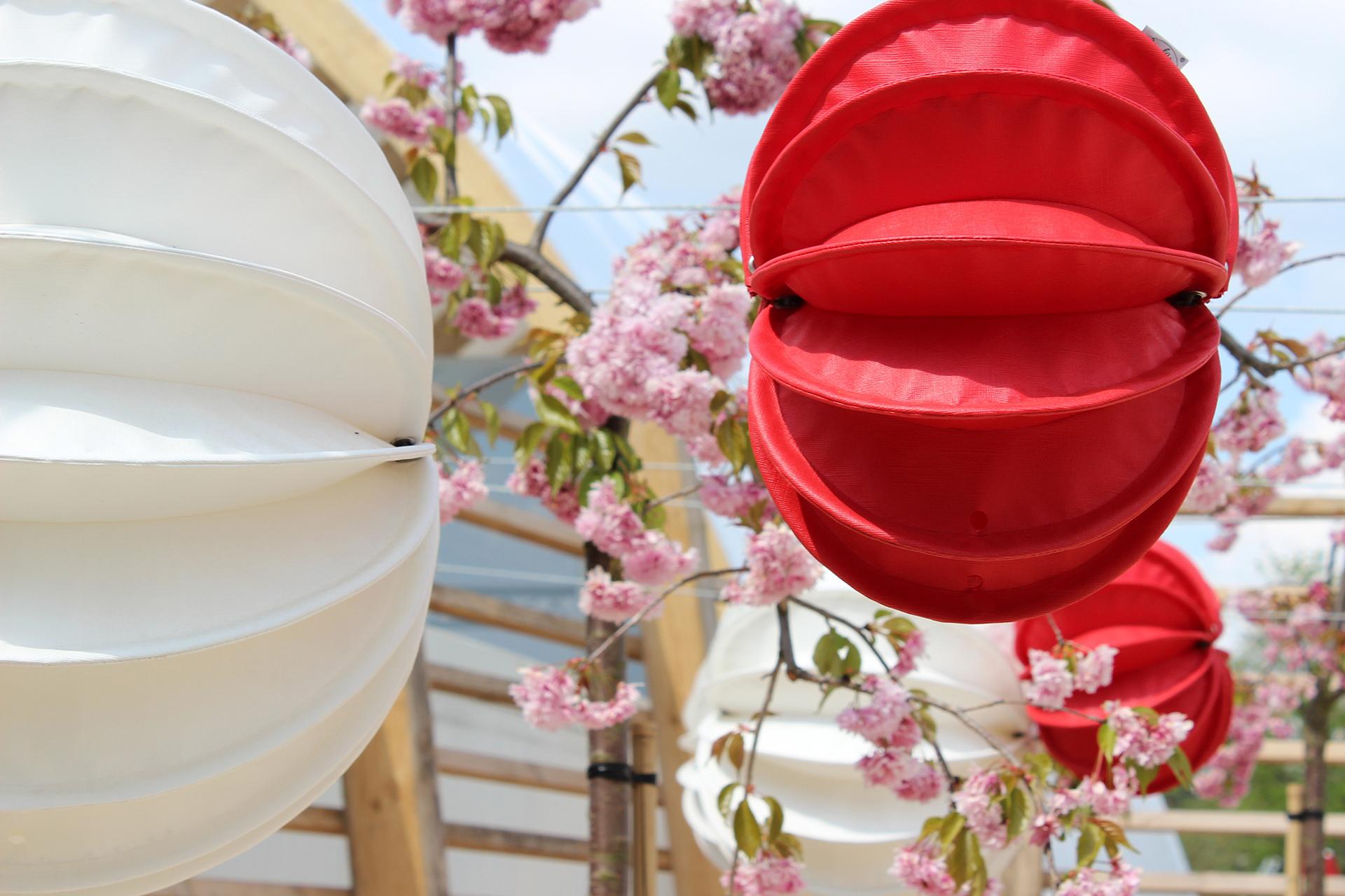 Lampions in Rot und Weiß geben sich ein entzückendes Stelldichein